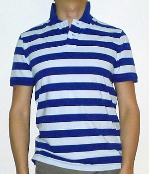 Men's Mossimo Dark Blue White Striped Polo Shirt