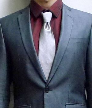 Men's Solid Light Gray Necktie