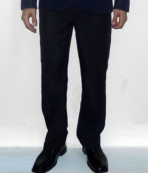 Zara Navy Dress Pants